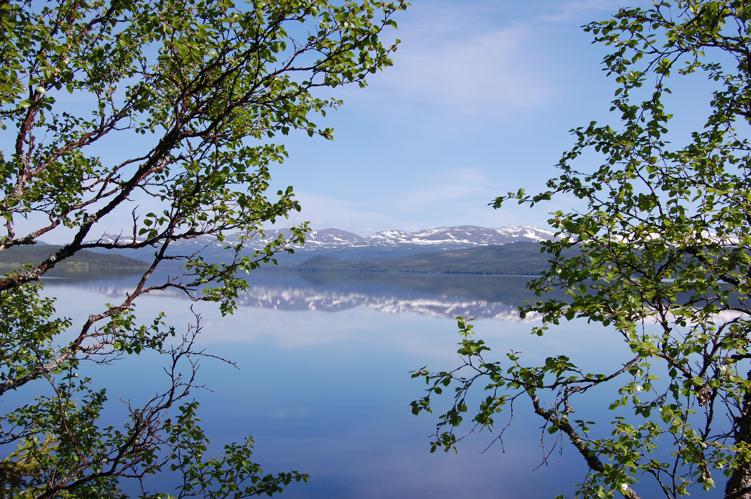 jämtland-4-6-juni-023